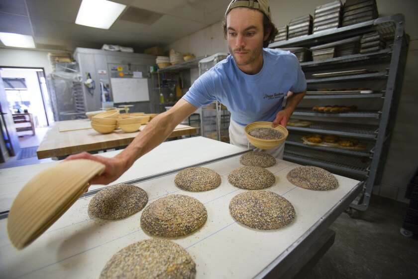 Louie Prager prepares to the walnut whole grain dough before placing them into the oven for baking.  Louie along with his brother Clinton own and operate Prager Brothers Artisan Breads in Carlsbad.