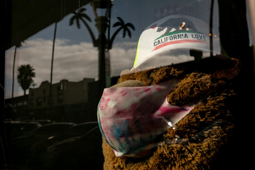 A stuffed bear is dressed up wearing a mask and a hat with the California state bear at a gift shop in Ocean Beach.