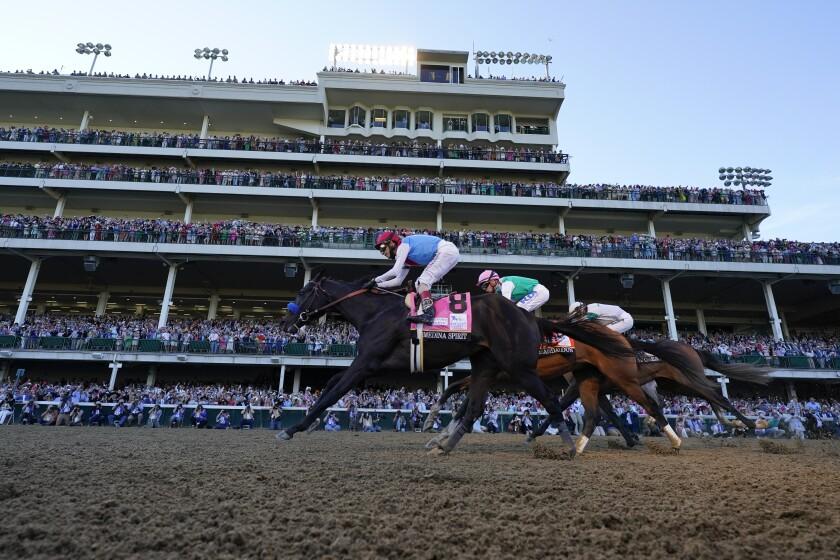 Horses on a racetrack