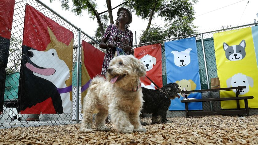 Dog park opens for residents of skid row homeless center - Los