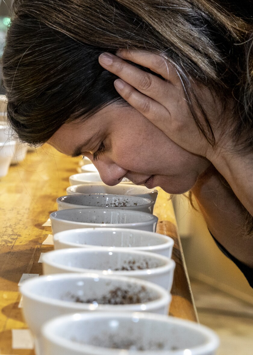 Trish Rothgeb smells the different coffee grounds set out during a tasting session at Wrecking Ball Coffee Roasters