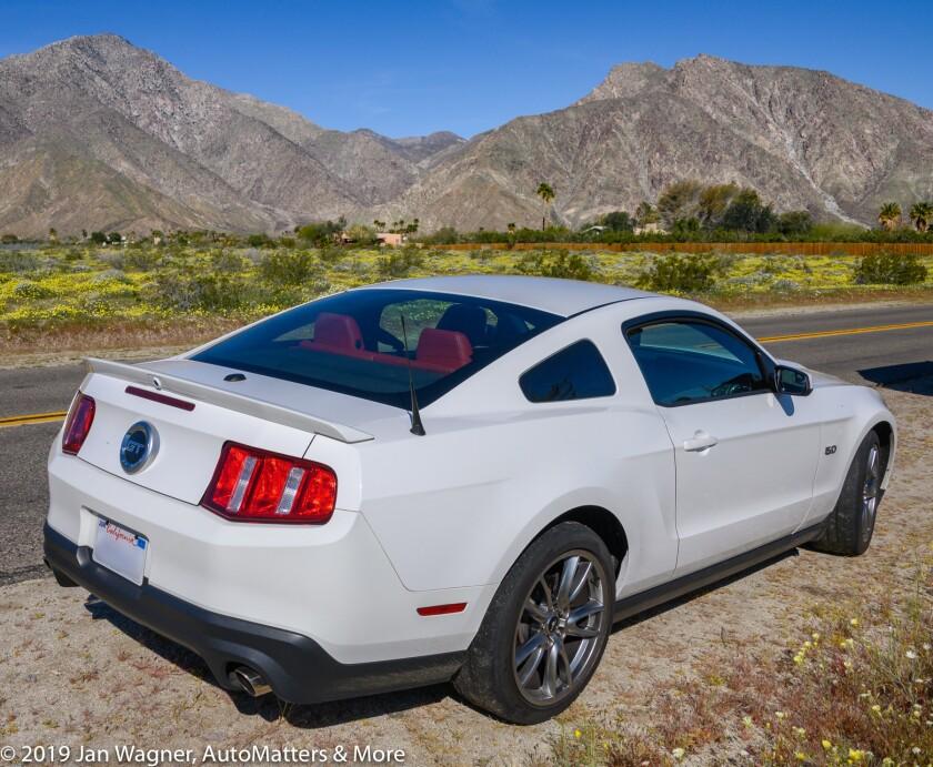 01766-20190323 Miata Club of San Diego Borrego Wildflowers Run--I drove my 2011 Mustang GT-28-300mmm Fmount with FTZ-2of2-Nikon Z6