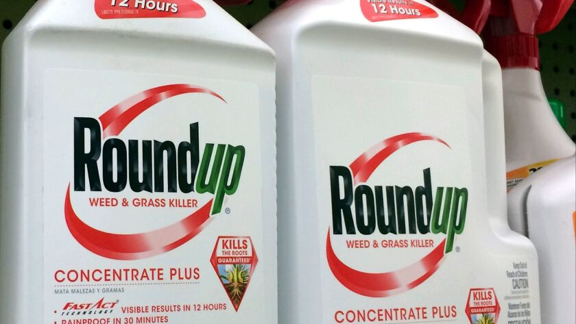 FILE - In this Jan. 26, 2017, file photo, containers of Roundup, a weed killer made by Monsanto, is