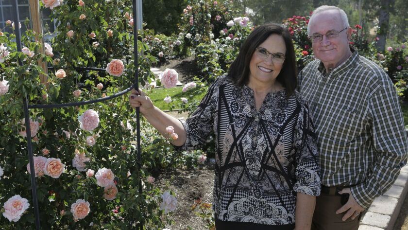 Bob Martin, incoming president of the American Rose Society, and his wife Dona, who is president of the San Diego Rose Society, at home in their Escondido garden.