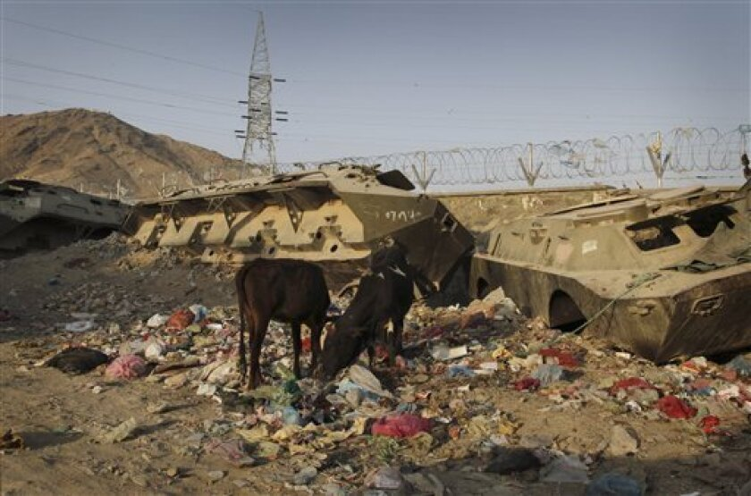 In this Aug. 23, 2011 photo, cows forage in garbage near destroyed Soviet-made armored tanks in Kabul, Afghanistan. Along with violence, uncertainty abounds this summer in Afghanistan where Afghans don't share the U.S.-led coalition's confidence that the Afghan security forces are ready to secure the nation by 2014 and others worry that the Afghan economy will collapse if foreign troops go home and the international community slows aid. (AP Photo/Musadeq Sadeq)