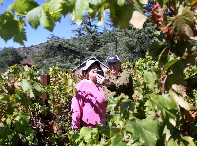 Ann Kramer, left, and Erik Siering, right, take a selfie in the vineyard