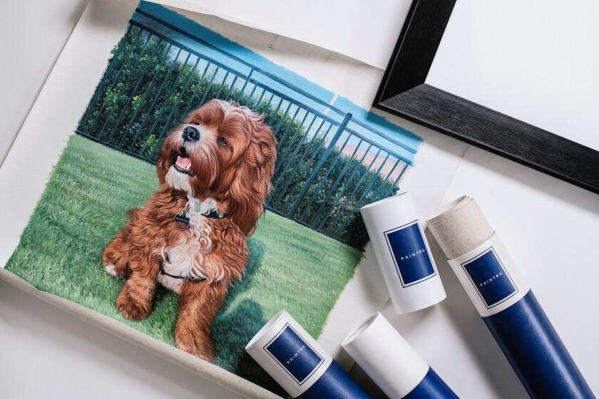 paintru dog.jpg