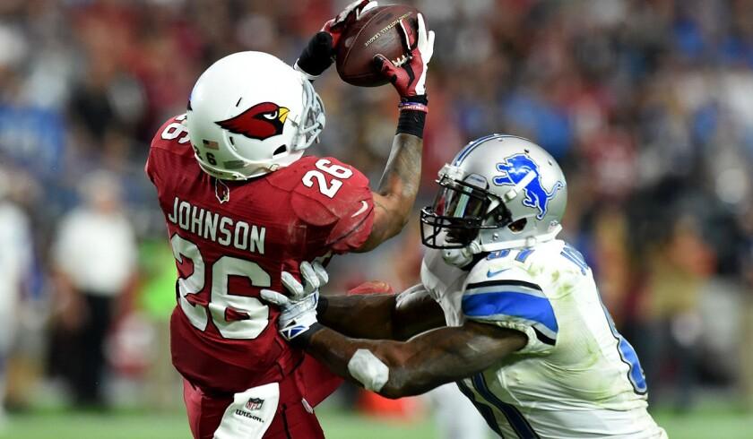 Rashad Johnson, Calvin Johnson