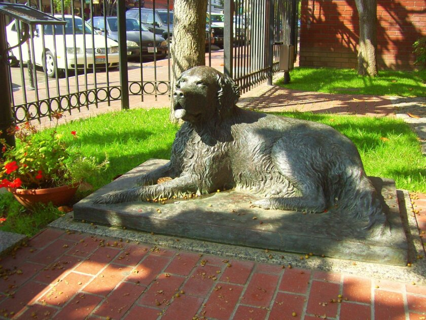 """A bronze statue of Bum sits outside of the William Heath Davis House museum in the Gaslamp. He was considered San Diego's """"town dog"""" in the 1880s."""
