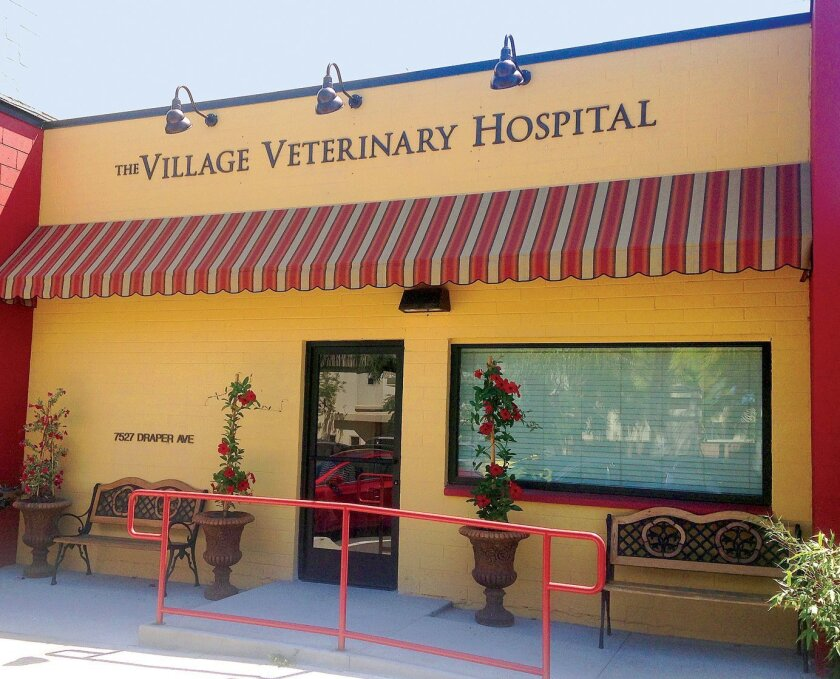 The Village Veterinarian Hospital, 7527 Draper Ave., La Jolla. (858) 412-4776. villagevetlj.com