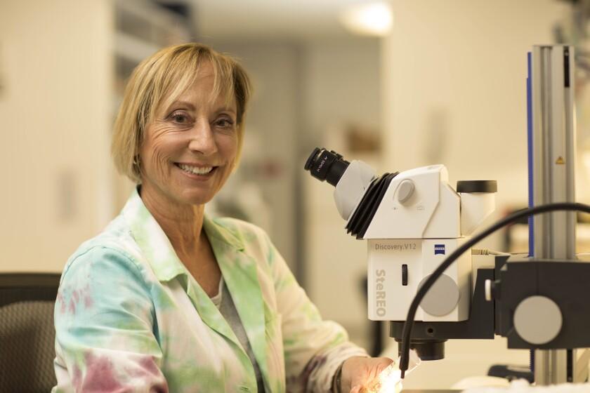 Karen Ocorr of the Sanford Burnham Prebys Medical Discovery Institute