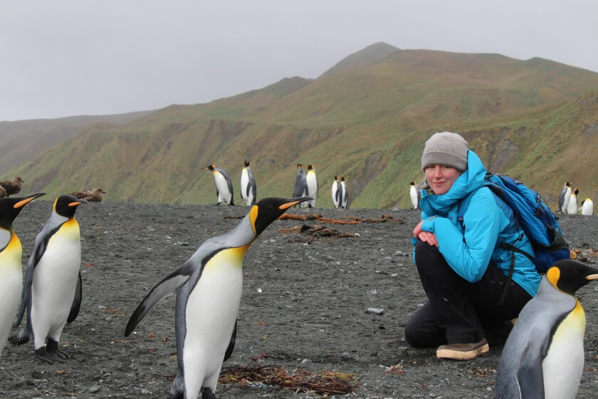 Author Maggie Shipstead crouches in a crowd of King penguins.