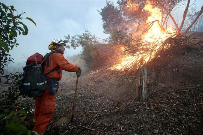 Un incendio en el condado Lake, al norte de San Francisco (California), sigue fuera de control después de consumir 8.700 acres (3.520 hectáreas), destruir 22 edificios, amenazar otras 600 estructuras y obligar a la evacuación de miles de personas. EFE/Archivo