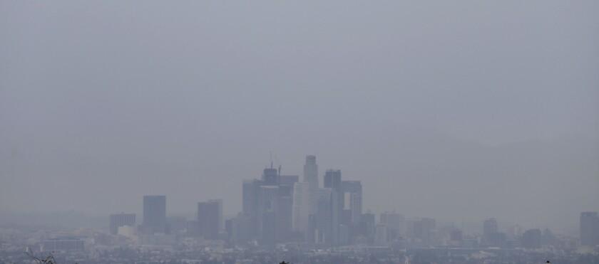 Rain in downtown L.A.