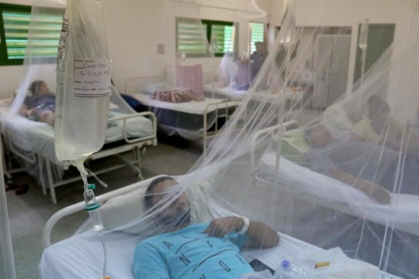 El virus afecta ya a 13 de los 17 departamentos del país y a Asunción, la capital, aunque la situación es más preocupante en Alto Paraná, en la frontera con Brasil. EFE/Archivo