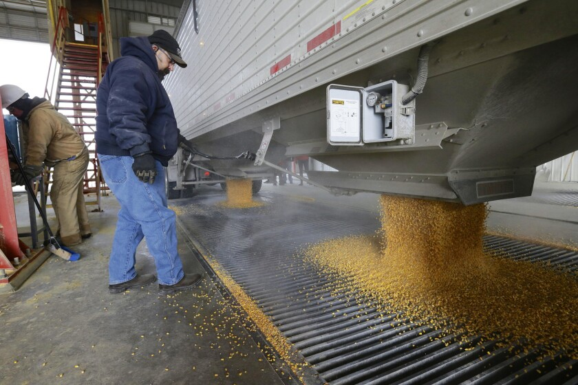 Ethanol, the corn-derived fuel that receives major government support, is no longer out of reach for criticism by presidential candidates stumping in Iowa. Here, corn is delivered to an ethanol plant in Shenandoah, Iowa.