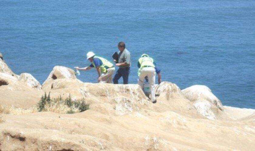 Odor Eaters: Using an eco-safe foam, workers rid La Jolla Cove of its odor — and a thick crust of bird poop — though the stench has returned, courtesy of the sea lions.