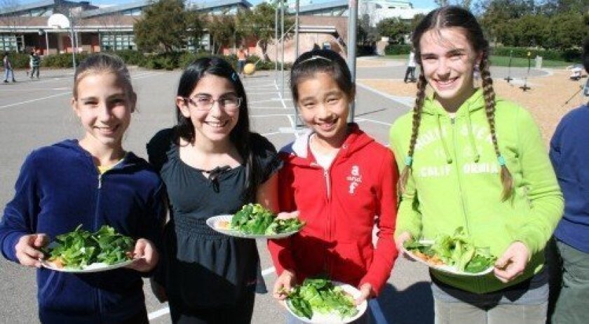 Alice Shashkina, Alli Abramowitz, Carine You and Katherine Solovyeva grab salad from the garden last week. Photo: Karen Billing