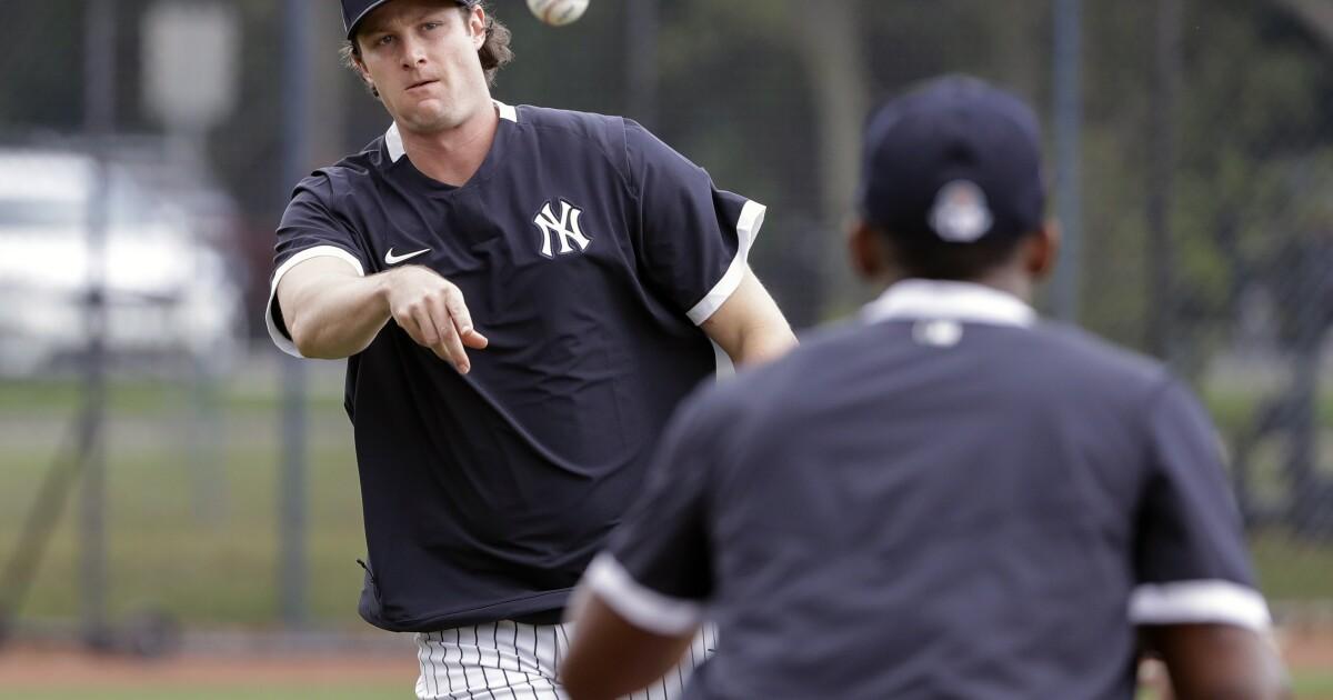 Progress report: New York Yankees