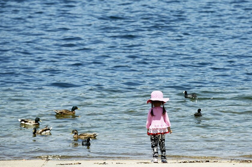 Anney Chen cools off near the water at Lake Miramar as high temperatures continue to rise in the San Diego region.