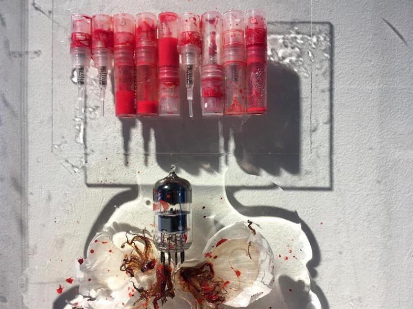 """Fotografía del 4 de diciembre de 2017, donde se muestra la obra """"Skin grafting by sample & Trade"""" (Injerto de piel por muestra y transacción) de Mika Rosenberg, en la sede del National YoungArts Foundation en Miami, Florida (EE.UU.). EFE"""
