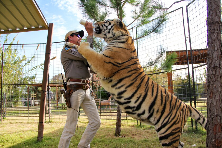 Joe Exotic with one of his tigers at his park in Oklahoma.