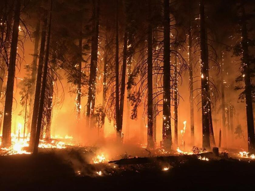 Nov. 11, 2018: Courtesy image ofthe United States Forest Service in which a group of firefighter try to control the flames of the Camp Fire in BButte COunty, California. EPA/EFE/USFS