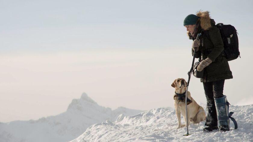 """This image released by Twentieth Century Fox shows Kate Winslet in a scene from """"The Mountain Betwee"""