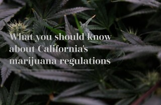What you should know about California's marijuana regulations