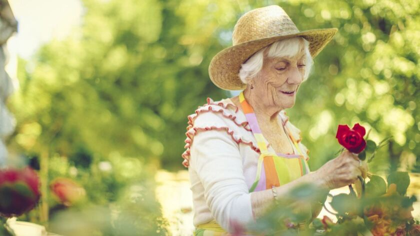 Protect yourself from the summer sun by wearing a hat and long sleeves while gardening.