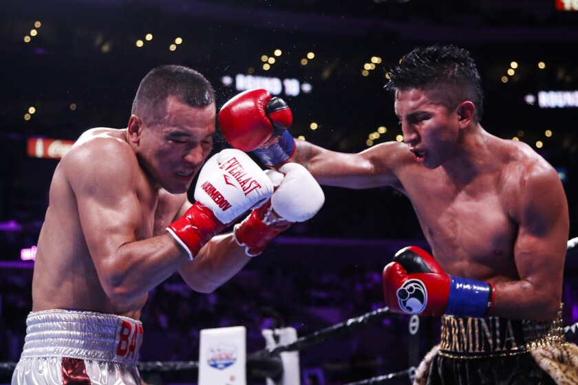 APphoto_Barrios Akhmedov Boxing