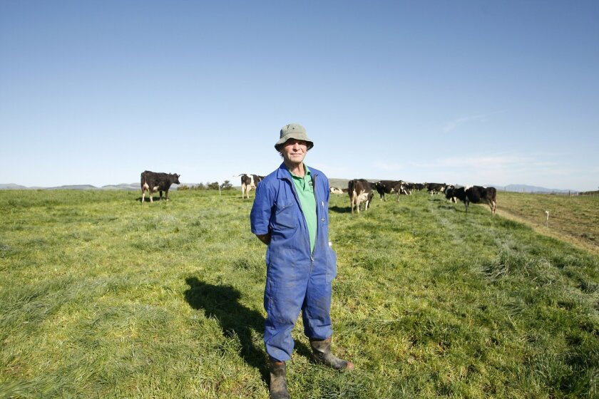In this Aug. 28, 2015 photo, Chris Engel poses on his dairy farm near Carterton, New Zealand. Dairy farmers like Engel have found their businesses have rapidly gone from booming to unprofitable as the world started producing more milk and Chinese demand weakened. (AP Photo/Nick Perry)