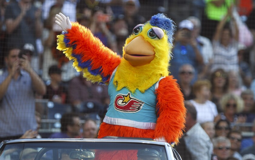 The San Diego Chicken, played by Ted Giannoulas, waves to the crowd as he arrives at Petco Park in 2019.