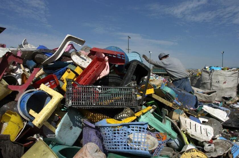 Varias agencias gubernamentales, junto al Municipio de Guaynabo, realizaron un operativo para identificar a los propietarios de terrenos donde se ubican vertederos clandestinos con el objetivo de retirar los desperdicios. EFE/Archivo