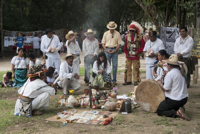 ONU pide a México información sobre los derechos de indígenas y de activistas