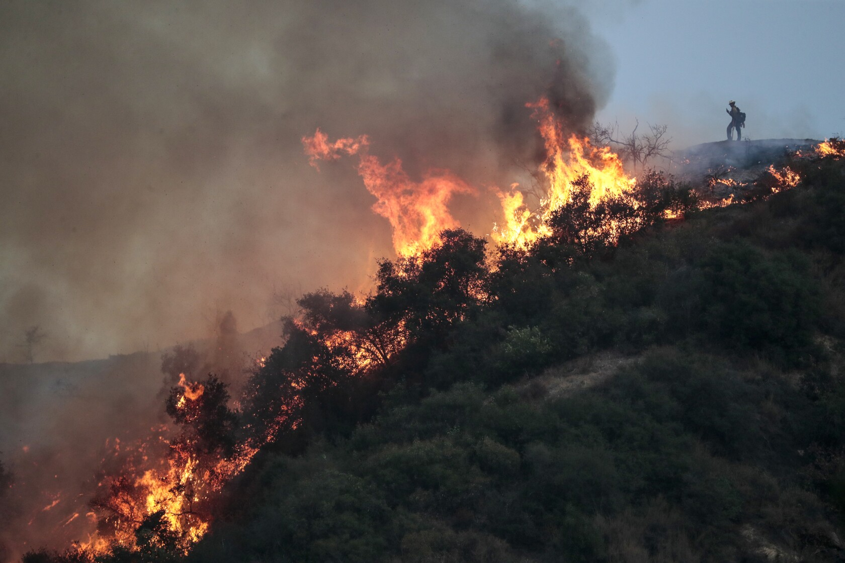Bobcat fire threatens multiple fronts, from Mt. Wilson to foothill neighborhoods