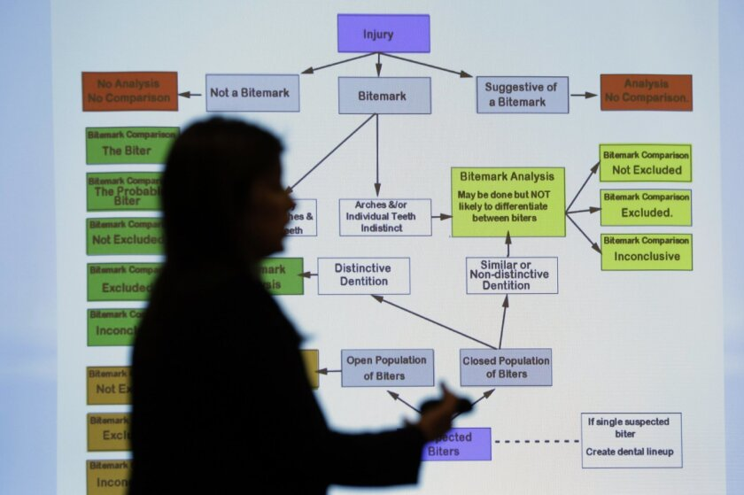 Lynn Garcia uses a chart as she takes part in a Texas Forensic Science Commission meeting to consider recommendations against using bite mark analysis in criminal cases, Thursday, Feb. 11, 2016, in Austin, Texas. The commission  moved forward with the recommendation that bite mark evidence not be u