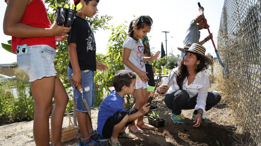 2903811_sd_hm_community_garden_NL San Diego, CA June 21, 2017 Janice Reynoso is the force behind su