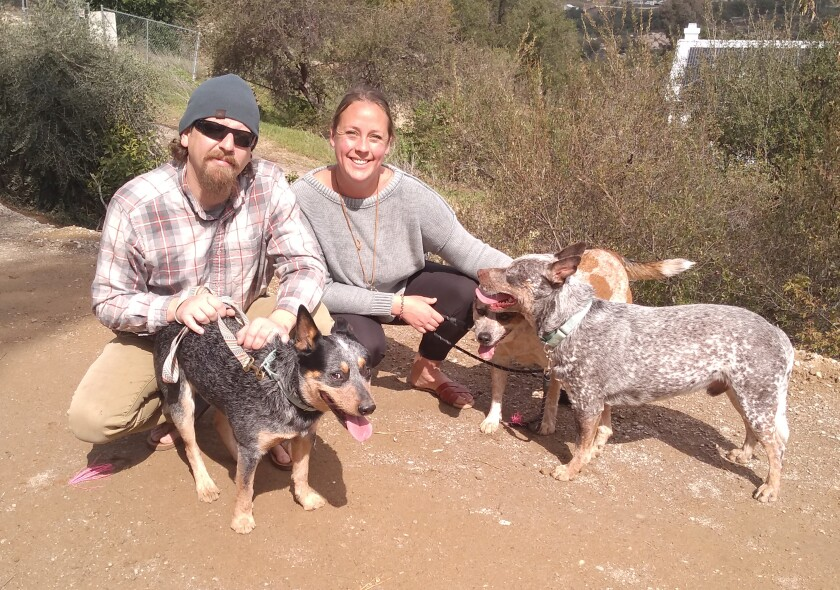 The Cattle Dog Coffee Co. brand is inspired by Chelsea and Steve Schoeni's three cattle dogs, Bandit, Indie and Maverick.