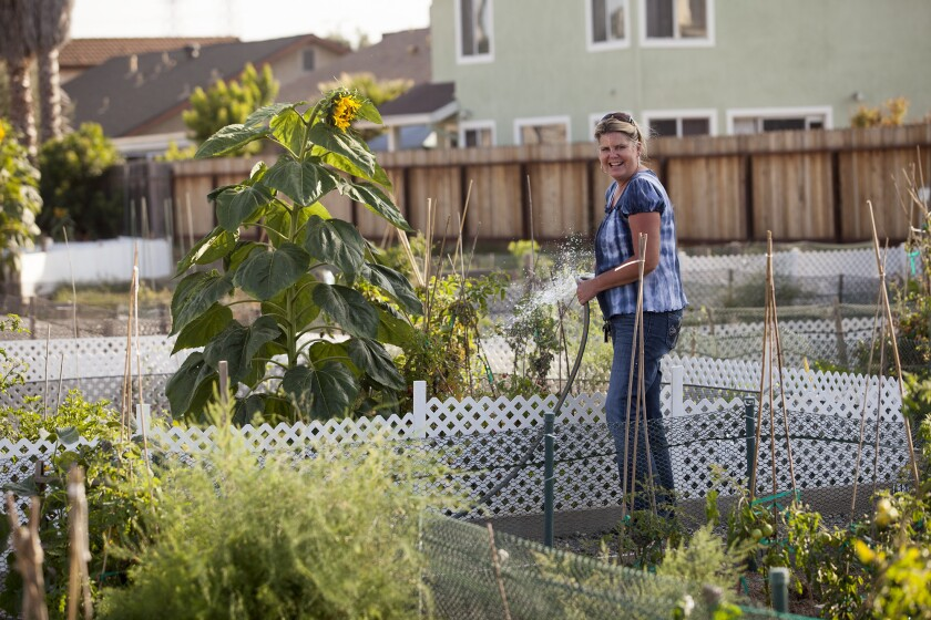 Letter: Urban gardening could help the poor