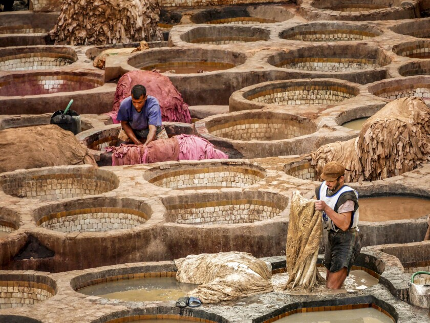FEZ, MOROCCO - Two men wash and dye camel, goat, sheep and cow hides in the Chouara, the 11th Centur