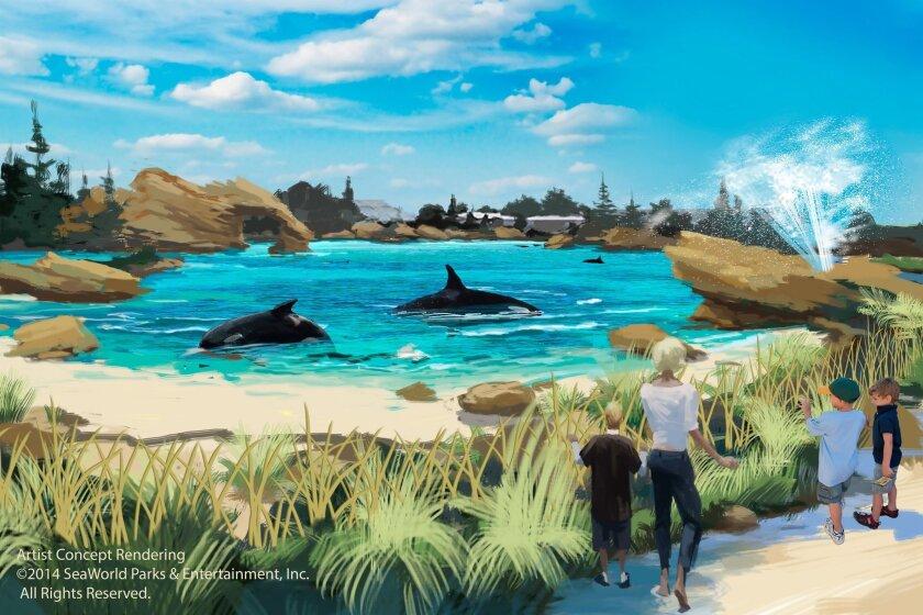 Blue World: Shore level rendering