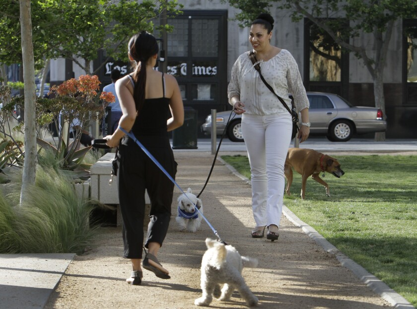 Walking your dog without a leash in Los Angeles could now get you slapped with a fine.