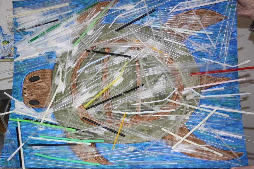 sd-1523467974-3vr7uhqcfv-snap-image