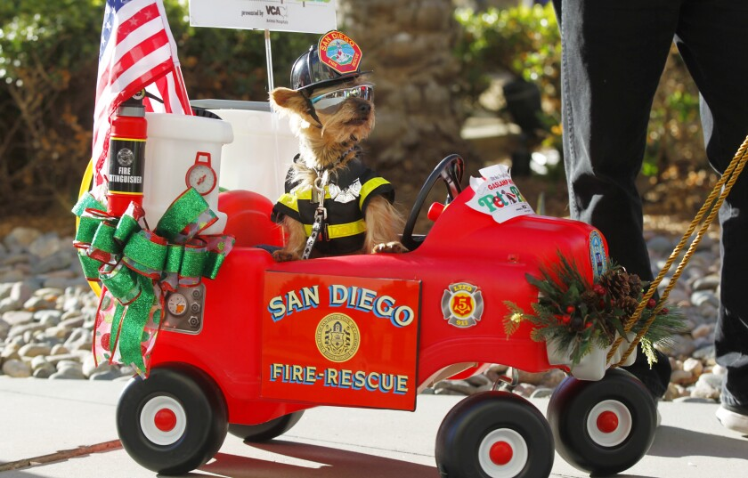 Things to do in December - Pacific San Diego