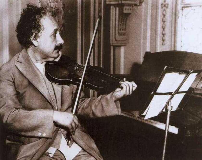 Einstein brain connectivity