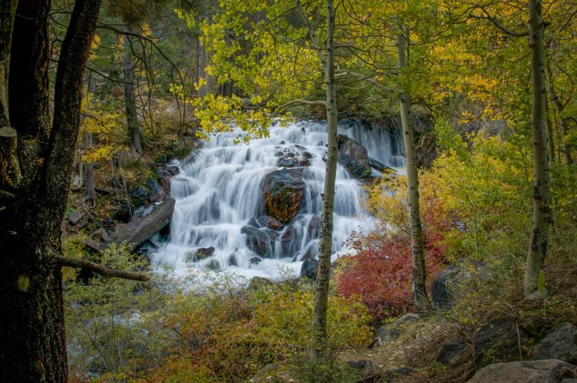 Waterfall Trail.jpg
