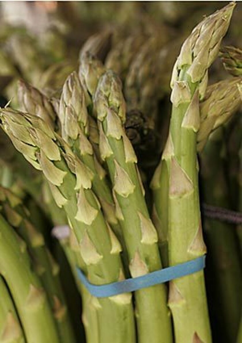 SPRING FRESH: Fat, juicy jumbo asparagus are available for a brief period in the spring.