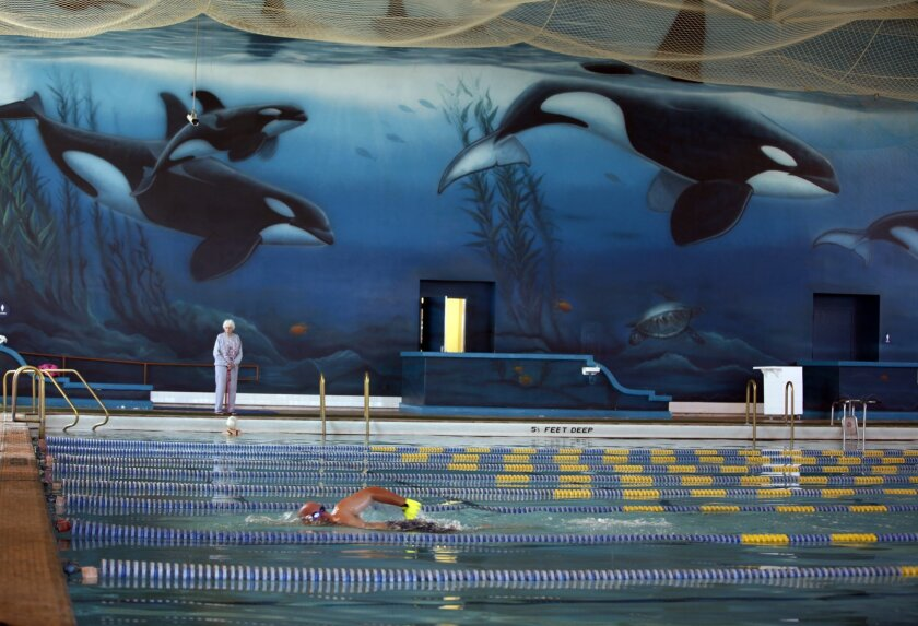 Steve Lopynski swam laps at The Plunge in March 2012, with Wyland's mural of orcas in the background. / photo by Peggy Peattie * U-T San Diego