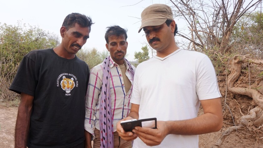 Dharmendra Khandal, right, reviews images with two village wildlife trackers outside Ranthambore.